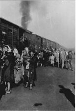 6x4 Gloss Photo ww509B World War 2 Pictures Treblinka tl1
