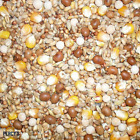 20KG Four Seasons Pigeon Corn Seed Mix - High Protein Bird Food Johnston & Jeff
