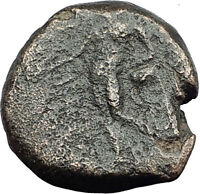 ANTIOCHOS III Megas 222BC RARE R1 Ancient Greek SELEUKID King Coin APOLLO i62711