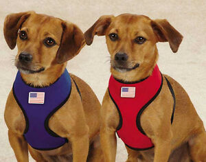 Casual Canine Neoprene Dog Harness Red Blue Lightweight Water Resistant