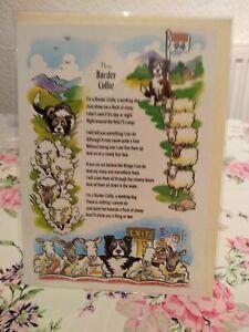 CARRICATURE DOG BIRTHDAY(BORDER COLLIE)