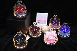 Eternal Rose flower Preserved rose everlasting rose flower gift with Led Light
