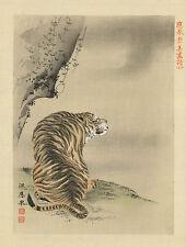 Japanese Print Reproductions: Tiger - Fine Art Print