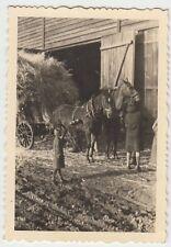 (N126) Orig. Foto Pferdefuhrwerk, Weisenbach (BaWü), Febr. 1944
