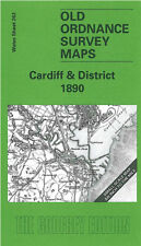 OLD ORDNANCE SURVEY MAP CARDIFF ST MELLONS WHITCHURCH LLANISHEN BARRY 1890