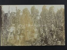 English HOP PICKING / PICKERS Field Portrait (8) Early RP Postcard
