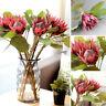 HD_ BL_ 1Pc King Protea Artificial Flower Fake Plant DIY Wedding Bouquet Party D