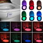 8 Colors Body Sensing Automatic LED Motion Sensor Toilet Bowl Night Light Lamp