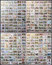 Lotto 264 serie Italiane figurine Liebig ANTICHE diverse Stock Collezione Cromo