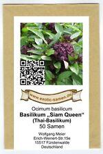 """Basilikum Thai """"Siam Queen"""" (50+ Samen)"""
