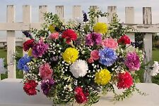 Funeral Headstone Cemetery Spray Memorial Grave Flowers Rainbow Carnations