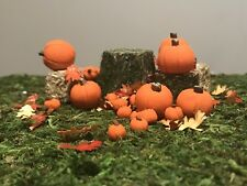 8 Small Miniature Fairy Garden, Doll House Pumpkins. Polymer Clay Miniatures