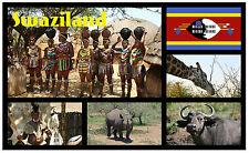 SWAZILAND, SOUTHERN AFRICA - SOUVENIR NOVELTY FRIDGE MAGNET - BRAND NEW - GIFT
