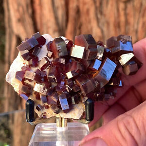 8cm 124g Red Vanadinite Crystal Stone Rock Cluster from Mibladen, Morocco
