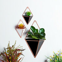 Geometric Plant Flower Pot Hanging Succulent Vase Wall Decor with Holder Size M