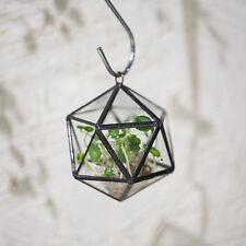 Hanging Planter Clear Glass Geometric Terrarium Succulent Plant Pot Garden Decor
