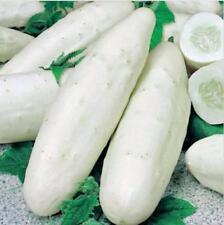 50Pcs White Cucumber Seeds Cucumis Sativus Vegetable Fruit Garden Home Plant New
