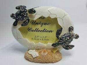 Turtle Hatchling Photo Frame featuring Cracked Egg and Sand Seashell Design