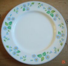 Midwinter Staffordshire Dinner Plate CANTERBURY