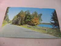 Vintage Postcard: 1951 A Lake Side Road Beginning of Autumn