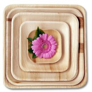 FOOGO Green Disposable Palm Leaf Plates Square Bamboo Biodegradable Eco friendly