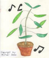Wunderbar ! Die Telegraphen- oder Tanzende Pflanze ! Der Hit !
