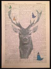 Vintage Cerf Cerf Impression De Papillon Antique Dictionary Page Art Mural Image