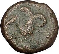 Syracuse in Sicily 375BC Tyrant Dionysios Greek Coin ATHENA HIPPOCAMP  i51719