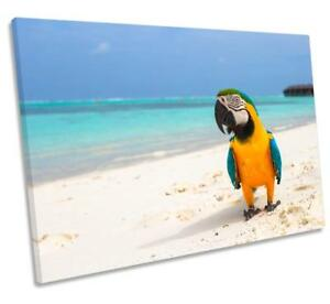 Tropical Beach Parrot CANVAS WALL ART DECO LARGE READY TO HANG all sizes