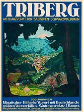 Triberg im Schwarzwald Germany German Vintage Travel Advertisement Poster