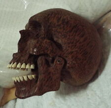 Real Human Size Hand Carved Wooden Skull Teeth Moving Jaw Vintage Collectible