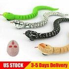 Remote Control Snake Rattlesnake Animal Trick Terrifying Mischief Random US