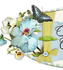 Shabby Vtg Chic Blue Butterfly Floral Ebay Compliant Listing Auction Template