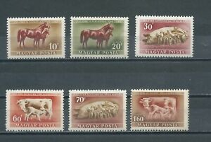 HUNGARY - 1951 Animals   (MH)