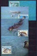 s3694) MAURITANIE 1986 MNH** WWF, Monachus Monachus 4v MAXICARDS