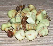 8 x Chrysoprase Citron/Yellow Tumblestones 18mm-22mm Crystal Gemstone Wholesale