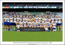 Wicklow All-Ireland Ladies Junior Football Champions 2011: Gaa Print