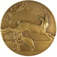 Fontaine's fables LE LIEVRE ET LA TORTUE Tortoise & Hare  by Vernon bronze 60mm