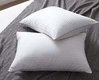 2 pcs.Pillow goose down and feather bed pillows 100% Egyptian cotton cover sleep