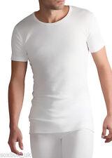 Camisetas de hombre de manga corta color principal blanco de poliéster
