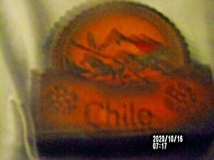 7 Piece Leather Coaster Set-each has different design/Box Holder Case Chile