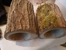 hard wood pleco breeding caves
