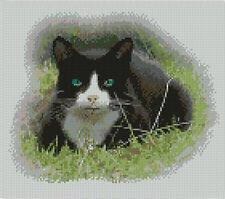"Black & White Cat Counted Cross Stitch Kit 10"" x 8.5"" 25.6cm x 21.6cm C2167"