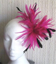 hot pink black feather fascinator hair clip headpiece brooch wedding party