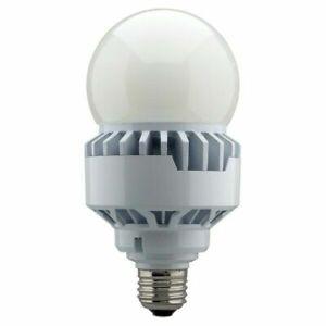 LED HID Replacement 25W 70 Watt Equivalent A23 Medium E26 5000K Natural Light