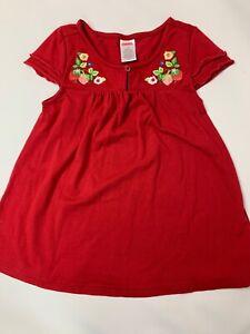 Gymboree Strawberry Farm Vintage Embroidered Tunic Top Shirt 4 RARE HTF