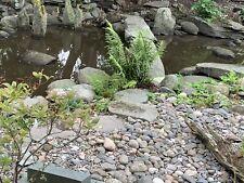 Natural River Cobbles 50-150mm In A Bulk Bag NEW