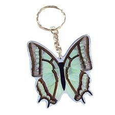 Real Insect Butterfly Key Ring/Chain Charm-Polyura Narcaea China Nawab Leafwing