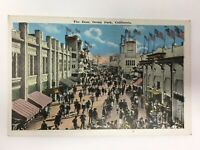 The Zone Ocean Park Santa Monica California Postcard