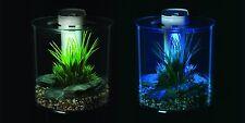 Poisson de bureau aquarium 10L comptoir réservoir intégré filtre éclairage led